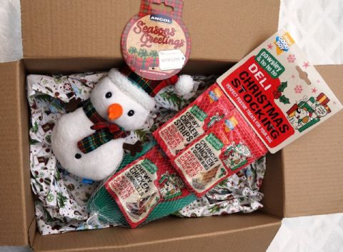 CHRISTMAS DOG TOY GIFT BOX WITH PLUSH  SNOWMAN & DELI TREAT FILLED STOCKING